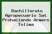Bachillerato Agropecuario Sat Prohaciendo Armero Tolima