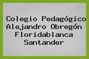 Colegio Pedagógico Alejandro Obregón Floridablanca Santander