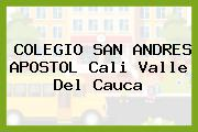 COLEGIO SAN ANDRES APOSTOL Cali Valle Del Cauca