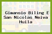 Gimansio Biling E San Nicolas Neiva Huila
