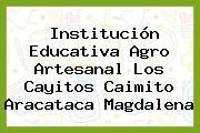 Institución Educativa Agro Artesanal Los Cayitos Caimito Aracataca Magdalena