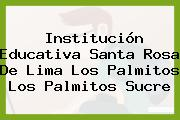 Institución Educativa Santa Rosa De Lima Los Palmitos Los Palmitos Sucre