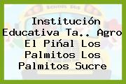 Institución Educativa Ta.. Agro El Piñal Los Palmitos Los Palmitos Sucre