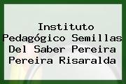Instituto Pedagógico Semillas Del Saber Pereira Pereira Risaralda