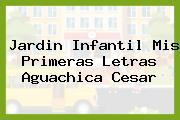 Jardin Infantil Mis Primeras Letras Aguachica Cesar