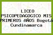 Liceo Psicopedagogico Mis Primeros Años Bogotá Cundinamarca