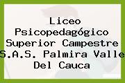 Liceo Psicopedagógico Superior Campestre S.A.S. Palmira Valle Del Cauca