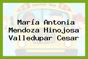 María Antonia Mendoza Hinojosa Valledupar Cesar