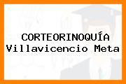 CORTEORINOQUÍA Villavicencio Meta