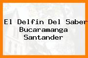 El Delfin Del Saber Bucaramanga Santander