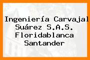 Ingeniería Carvajal Suárez S.A.S. Floridablanca Santander